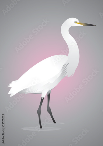 Egret in Japan style