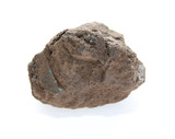brown coal