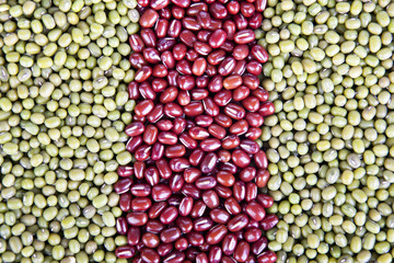 Lines of Dried Beans