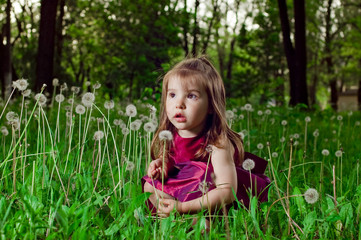 Beautiful little girl on a lawn with dandelions