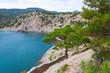 Summer Crimean landscape