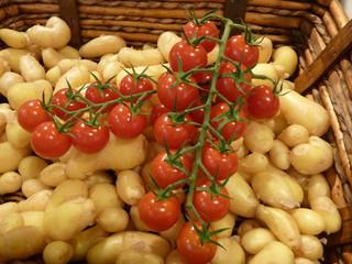 tomates grappes et ratte