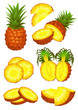 Ananas piece set