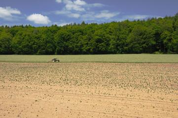 Soil II