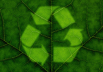 Recycle symbol over green leaf texture