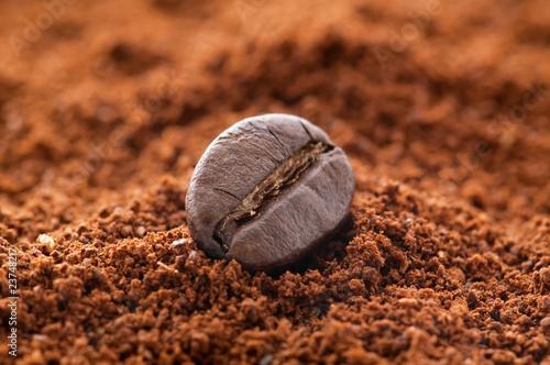 Kaffeebohne auf Kaffeepulver