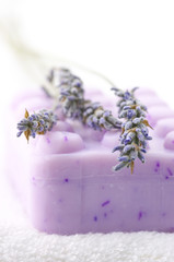 Soap and lavander