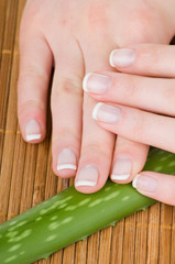 Female hands and Aloe leaf on bamboo background