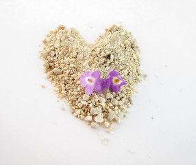 two tiny lantana flowers on sand heart