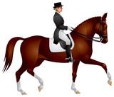 Dressage horse. Equestrian sport rider poster