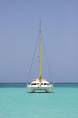 catamaran in saona beach
