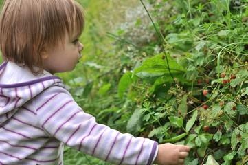 bébé et jardin