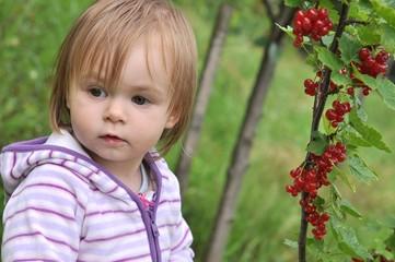 bébé mangeant grosseilles