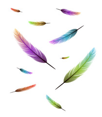 colored feathers flying vector background