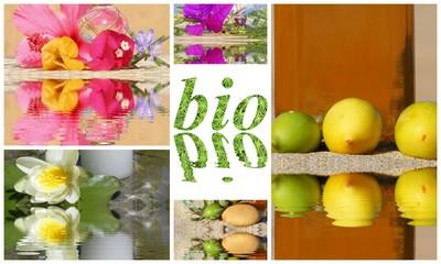 produits naturels bio