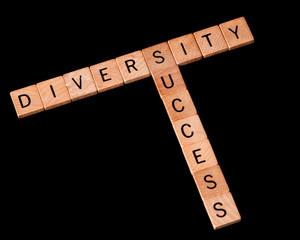 Relationship between diversity and success