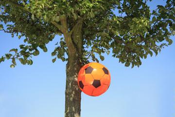 Dutch soccer decoration
