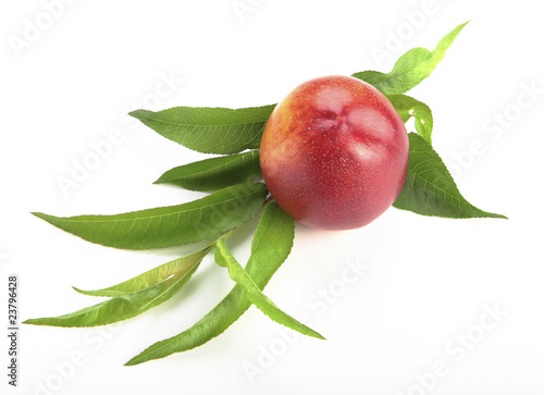 nectarine with green leaves on the white background