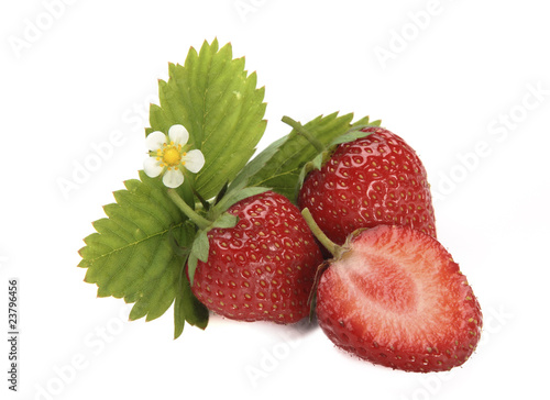 Strawberry with leaf and floret