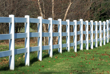 White Fence in Fall