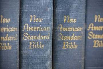 Copies Of The New American Standard Bible In A Row