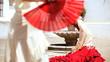 Passionate Flamenco Dancing