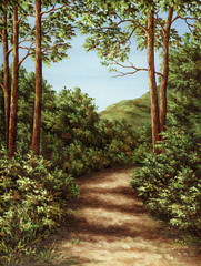 Footpath in mountain wood
