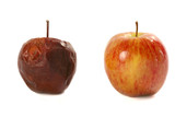 Rotten apple and fresh apple poster
