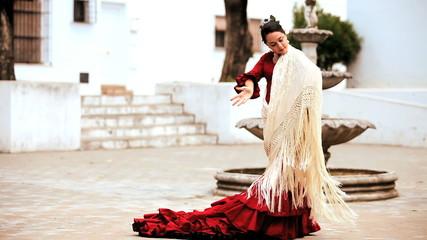 Beautiful Spanish Flamenco Dancer