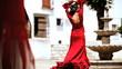 Dramatic Flamenco Dancers