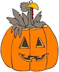 Turkey In A Pumpkin