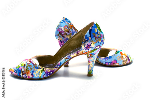 Elegant female shoes