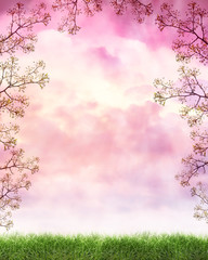 Peaceful Nature Cloud Background