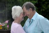 Senior couple shares tender moment in their garden. poster