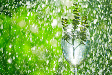 wine rain drop