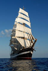 The sailing ship in the sea on waves