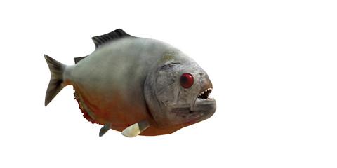 piranha v2
