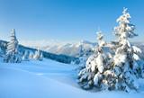 Fototapety Snowy landscape