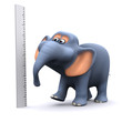 3d Dimensional elephant