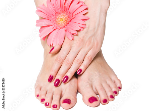 Woman hand and feet with manicure and pink flower