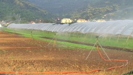 Bewässerungsanlage II