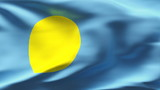 Creased Palau satin flag in wind with seams and wrinkle poster