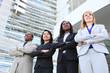 Diverse Ethnic Business Team
