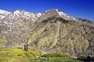 El Cervunal en la Sierra de Gredos