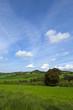 Green land