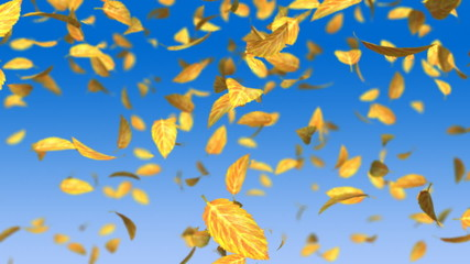 falling yellow leafs on blue gradient background
