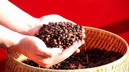 Kaffeeröstung Begutachtung v2