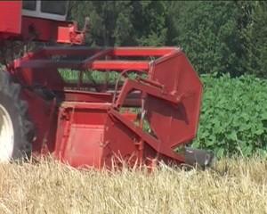 Macchina per lavorare il grano
