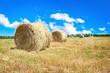Big hay bale field in late summer