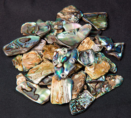 Pile of Paua shells
